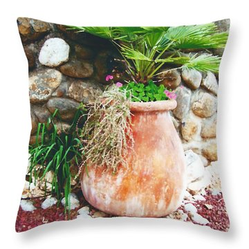 By The Roadside Throw Pillow by B Wayne Mullins