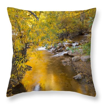 By The Shimmering Brook Throw Pillow