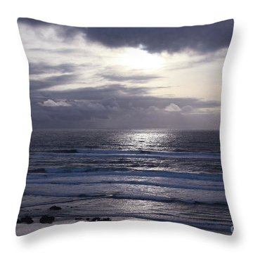 By The Silvery Light Throw Pillow by Sheila Ping