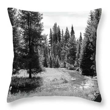 By The Stream Throw Pillow by Christin Brodie