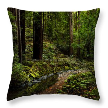 By The Stream In Muir Woods Throw Pillow