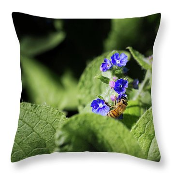 Throw Pillow featuring the photograph Bzzz... by Helga Novelli