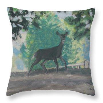 California Deer At Foothills Near Mountain View Throw Pillow