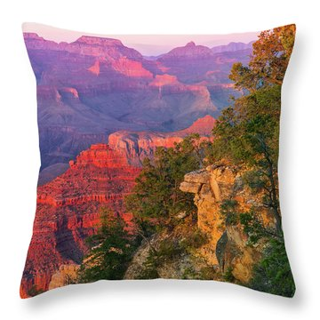 Canyon Allure Throw Pillow by Mikes Nature