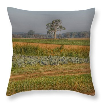 2009 - Cabbage And Pumpkin Patch Throw Pillow