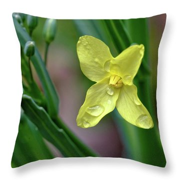 Cabbage Blossom Throw Pillow
