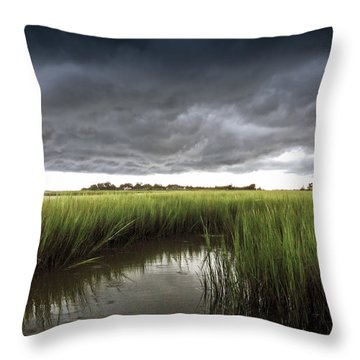 Cabbage Inlet Cold Front Throw Pillow
