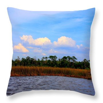 Throw Pillow featuring the photograph Cabbage Palms And Salt Marsh Grasses Of The Waccasassa Preserve by Barbara Bowen