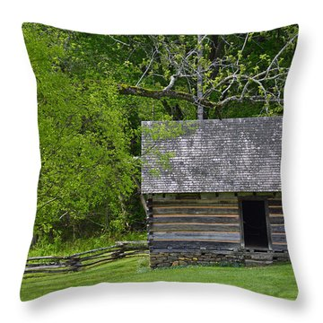 Cabin At Zebulon Vance Birthplace Throw Pillow