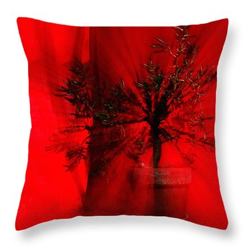 Throw Pillow featuring the photograph Cabin Fever Dance by Susan Capuano