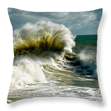Cabrillo Shorebreak  Throw Pillow