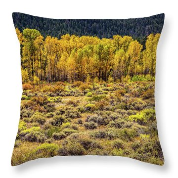 Cache La Poudre River Colors Throw Pillow by Jon Burch Photography