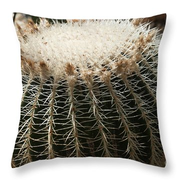 Cacti Fine Art Throw Pillow