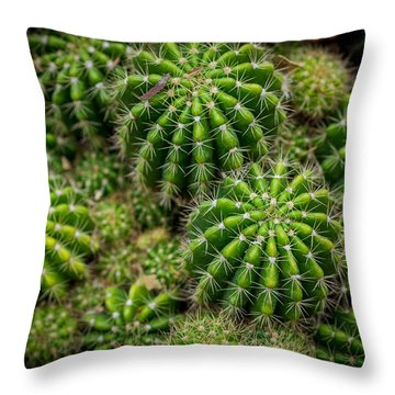 Throw Pillow featuring the photograph Cacti by Keith Hawley