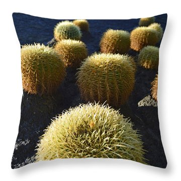 Throw Pillow featuring the photograph Cacti On The Roof by Marek Stepan