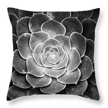 Cactus 18 Deep Bw Throw Pillow