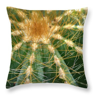 Throw Pillow featuring the photograph Cactus 2 by Jim and Emily Bush