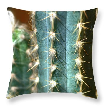 Throw Pillow featuring the photograph Cactus 3 by Jim and Emily Bush