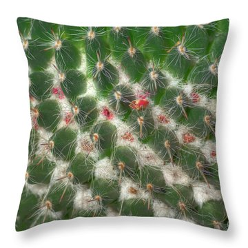 Throw Pillow featuring the photograph Cactus 5 by Jim and Emily Bush