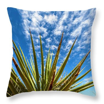 Cactus And Blue Sky Throw Pillow by Amyn Nasser
