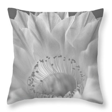 Cactus Bloom Burst Throw Pillow by Shelly Gunderson