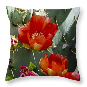 Cactus Blossom Throw Pillow