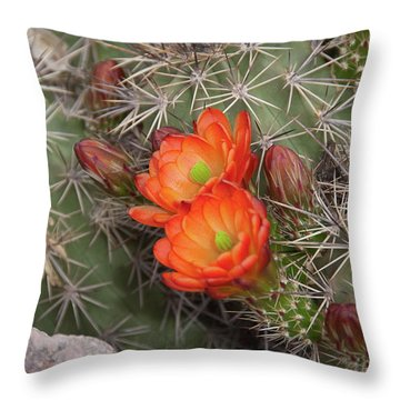 Throw Pillow featuring the photograph Cactus Blossoms by Monte Stevens