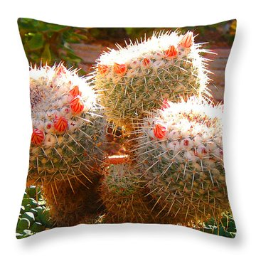 Cactus Buds Throw Pillow by Amy Vangsgard