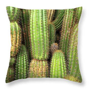 Cactus City Throw Pillow