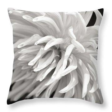 Cactus Dahlia Throw Pillow
