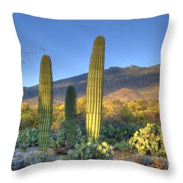 Cactus Desert Landscape Throw Pillow