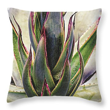 Throw Pillow featuring the photograph Cactus Desert Plant by Julie Palencia