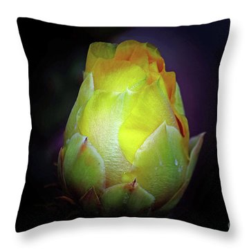 Cactus Flower 7 Throw Pillow