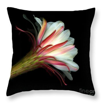 Cactus Flower Throw Pillow by Christian Slanec
