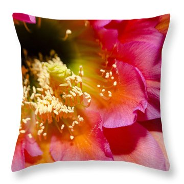 Cactus Flower Close Up Throw Pillow