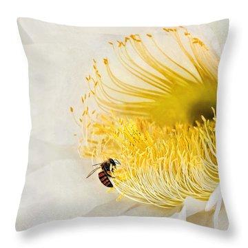 Throw Pillow featuring the photograph Cactus Flower Diner No. 2 by Joe Bonita