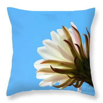 Cactus Flower Throw Pillow