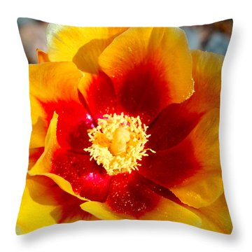 Throw Pillow featuring the photograph Cactus Flower V by M Diane Bonaparte