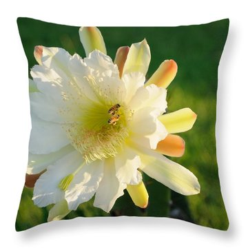 Throw Pillow featuring the photograph Cactus Flower With Bees by Bradford Martin