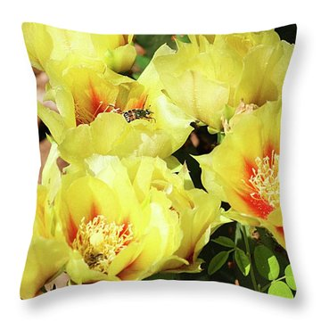Throw Pillow featuring the photograph Cactus Flowers And Friend by Sheila Brown