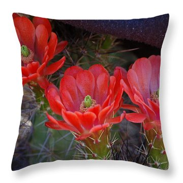 Cactus Flowers Throw Pillow