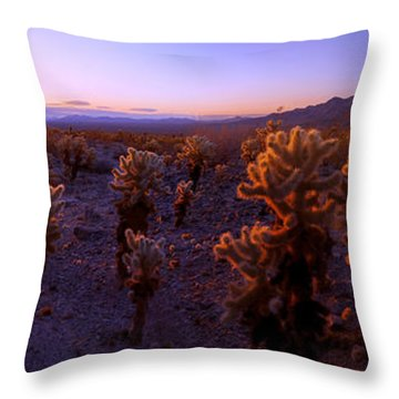 Prickly Throw Pillow