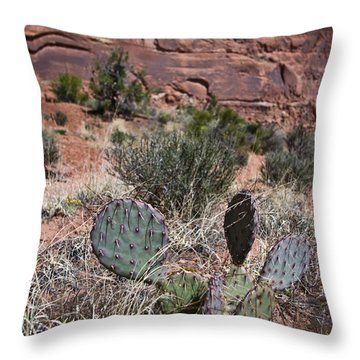 Cactus In Arches Nat'l Park Throw Pillow