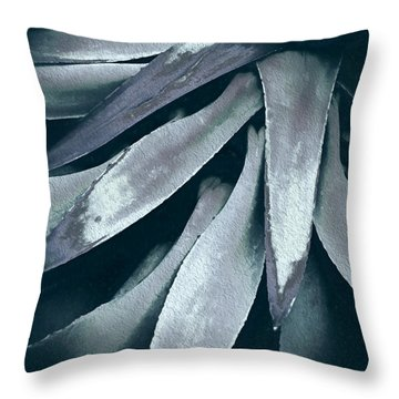 Throw Pillow featuring the photograph Cactus In Blue And Grey by Julie Palencia