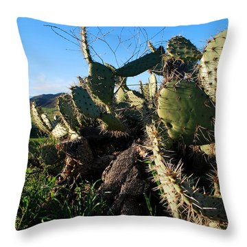Cactus In The Mountains Throw Pillow