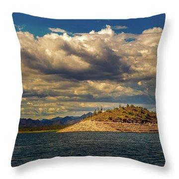 Cactus Island Throw Pillow