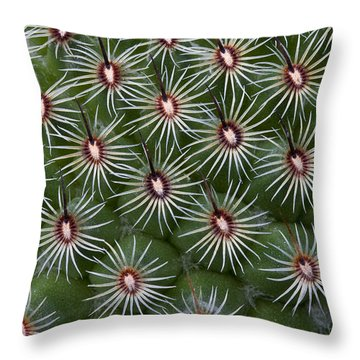 Throw Pillow featuring the photograph Cactus by Ken Barrett