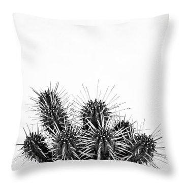 Cactus Nature Throw Pillow