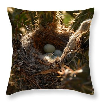 Cactus Nest Throw Pillow by David Lee Thompson