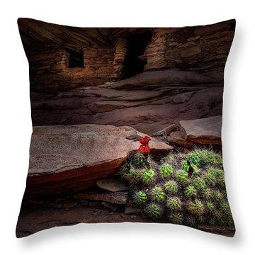 Cactus On Fire Throw Pillow